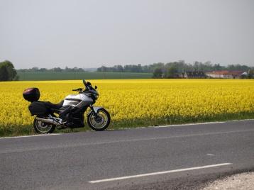 Bike near a spectacular paddock.