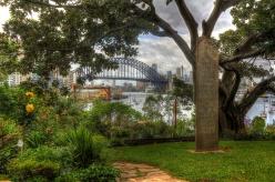 Sydney visit Nov 2012, Jacaranda, David & Nola, Kirrabilli